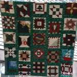 nifty fifty quilters 50 state quilt