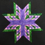 carol doaks michigan star quilt block